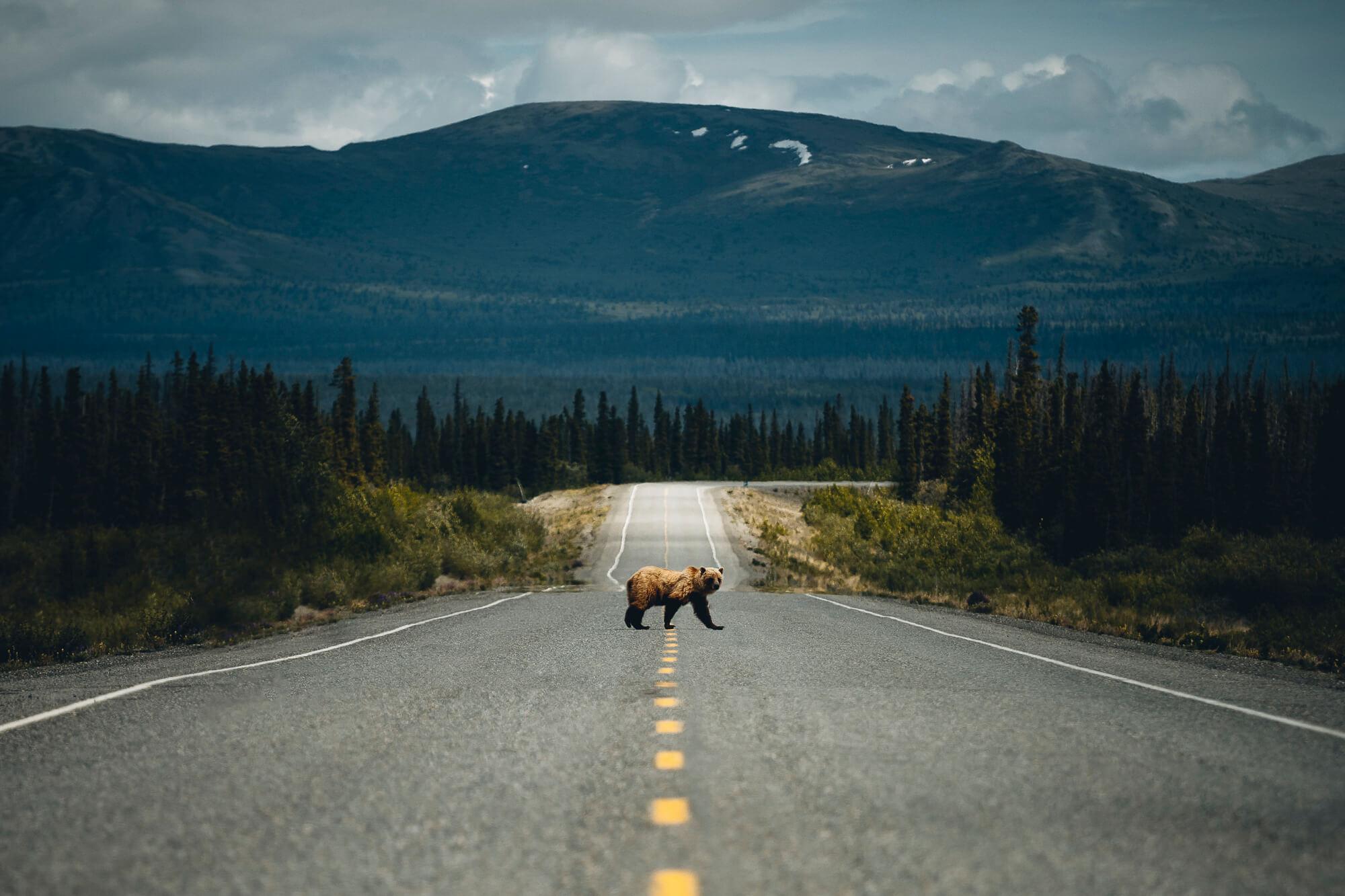 @pangea: Kanada